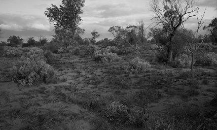 Paul Ogier The Prohibited Zone – Australian Atomic Landscapes